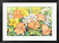 Framed Peach Tulips & Daffodils