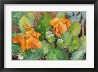 Framed Blossoming Cactus