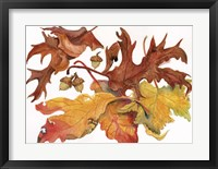 Framed Leaves And Acorns