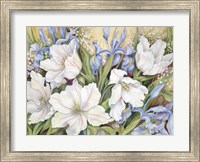 Framed White Tulips/ Blue Iris