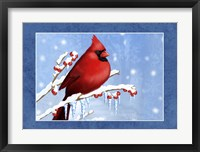 Framed Snow Berries