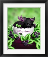 Framed Blackberry Kitten