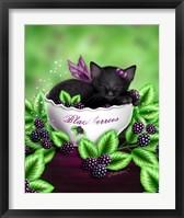 Framed Blackberry Kitten