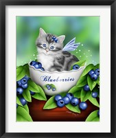 Blueberry Kitten Framed Print