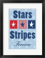 Framed Stars and Strips Verticle