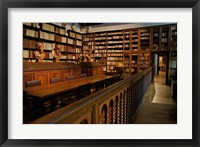 Framed Great Library, Plantin-Moretus Museum