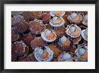 Framed Trouville Fish Market, Calvados, France