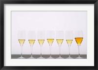 Framed Wine Tasting Glasses, Maison de la Champagne