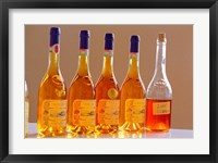 Framed Bottles of Disznoko Winery, Tokaj, Hungary