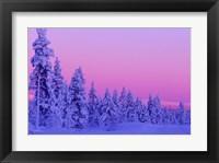 Framed Winter Sunset in Finland