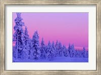 Framed Winter Sunset in Finland