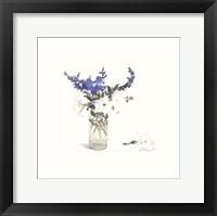 Framed Petunias & Blue Salvia