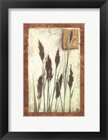 Framed Green Grasses