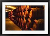 Framed Barrels of Tokaj Wine in Disznoko Cellars, Hungary
