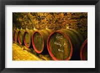 Framed Kiralyudvar Winery Barrels with Tokaj Wine, Hungary