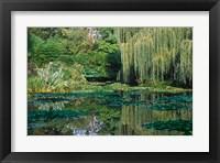 Framed Claude Monet's Garden Pond in Giverny, France