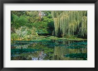 Framed Claude Monet's Garden Pond in Giverny, France