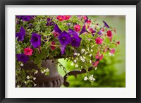 Framed Colorful Flowers