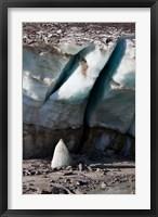 Framed Glacier Snout of Schlatenkees
