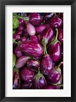 Framed Purple Eggplant, Seafront Market