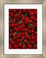 Framed Cherries, Normandy, France