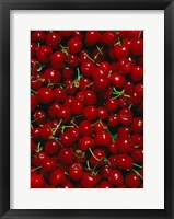 Framed Cherries, Normandy, France