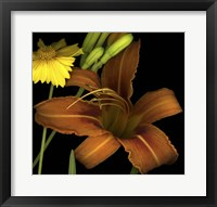 Framed Day Lily and Coreopsis