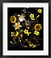 Framed Yellow