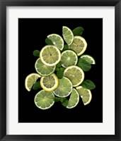 Framed Lemons, Limes & Mint