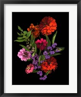 Framed Zinnia And Berries
