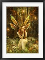 Framed Fairies Vale