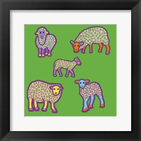 5 Sheep Framed Print