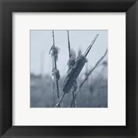 Framed Ice Cattail 1