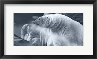 Framed Arctic Frost