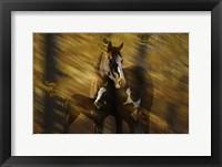 Framed Wild Horses in the Badlands I