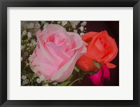 Framed Roses Pink And Red