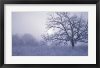 Framed Snow Terrain Tree VI