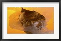 Framed Floating Fall Leaf II