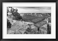 Framed Grand Canyon 1