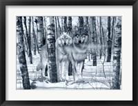 Framed Snow Shadows Silvertones