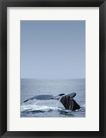 Framed Whale Tail And Sea Vertical