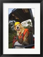 Canine Construction II Framed Print