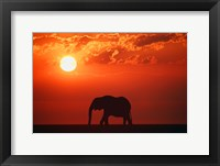 Framed Elephant Sunset Silhouette