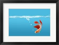 Goldfish Gone Swimming I Framed Print