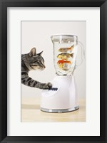 Framed Cat's Fish Shake