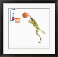 Framed Frog And His Basketball