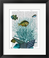 Fish Blue Shells and Corals Framed Print