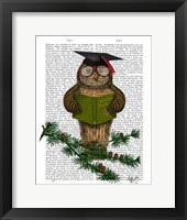 Framed Owl Reading On Branch