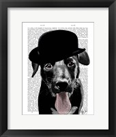 Black Labrador in Bowler Hat Framed Print