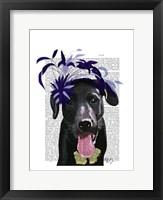 Framed Black Labrador With Blue Fascinator